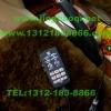本田雅阁安装美国VS SIGNAL GL332AMC变色中网灯爆闪灯及VS SIGNAL 增强版V7-1PLUS警报器